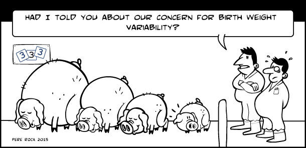Birth weight variability