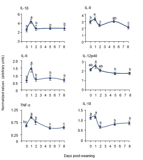 Changes in the expression of pro-inflammatory cytokine messenger RNA levels