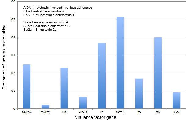 E coli virulence factor prevalence