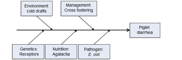 Five production input model of disease causation