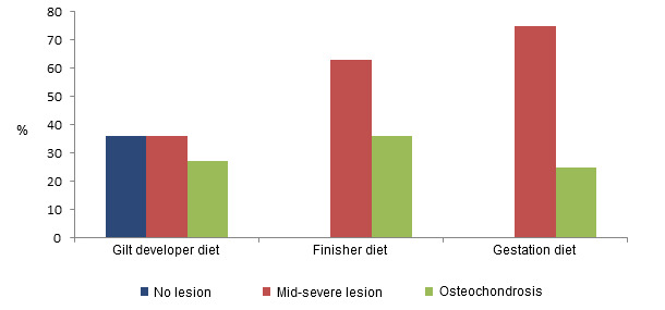 Prevalence of claw lesions in gilts depending on the diet fed during their development