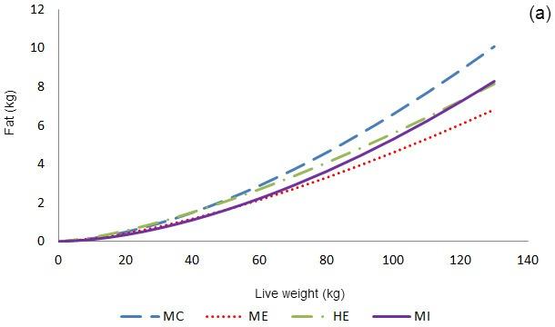 Allometric growth of fat tissue
