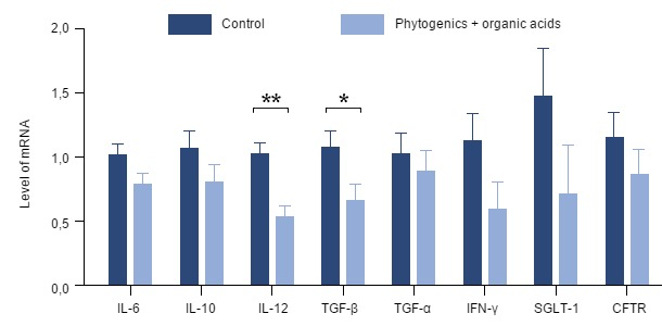 Effect of the addition of a mixture of thyme, vanilla and organic acids on gene expression of various pro-inflammatory cytokines in the gut of piglets