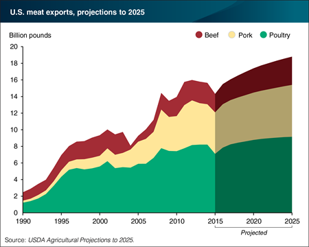 usa meat exports projections