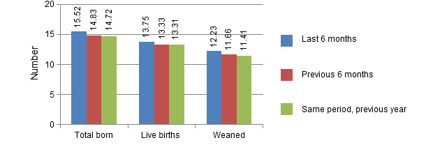 Number of live births, total piglets born and weaned piglets per litter