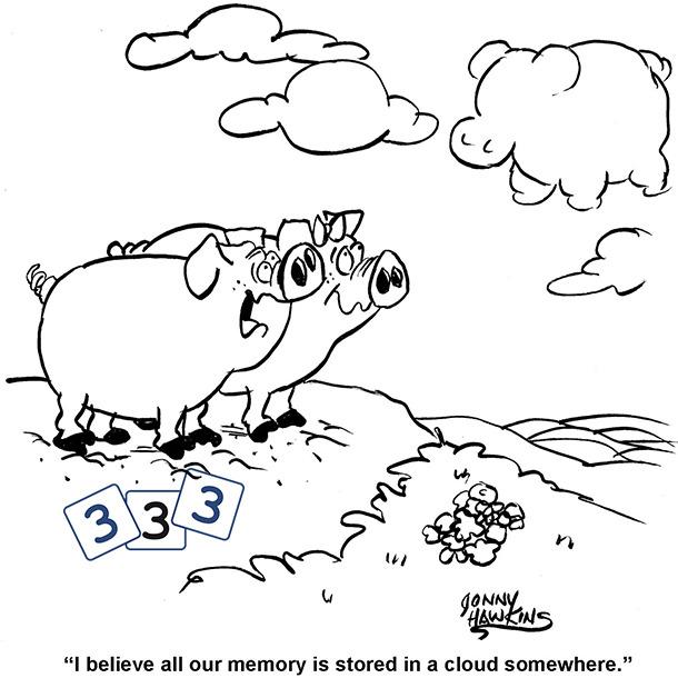 Swine Cloud