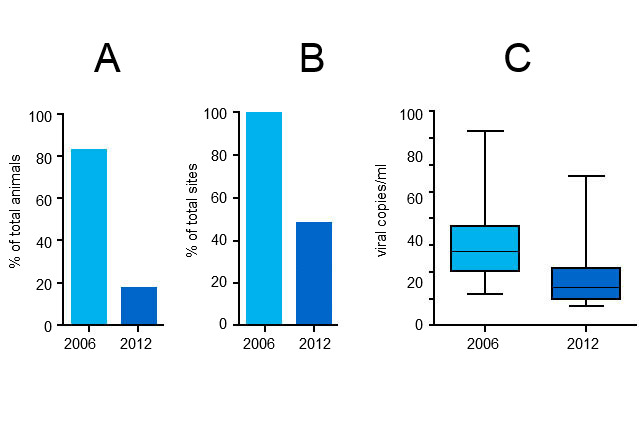 PCV2 viremia levels in 2006 and 2012