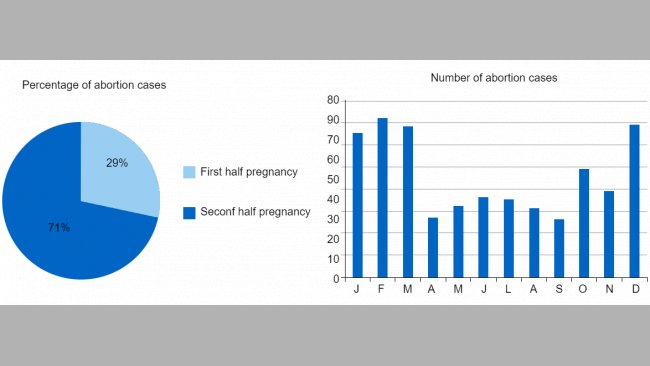 The pie chart represents the percentage of abortions in the first and second stage of pregnancy, respectively. The bar chart represents the seasonality of abortions.