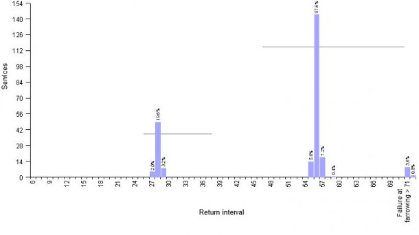 Graphic1.- Example of 4WBF farm:planning of return sow mating by use of hormones. Average return interval51,6 days