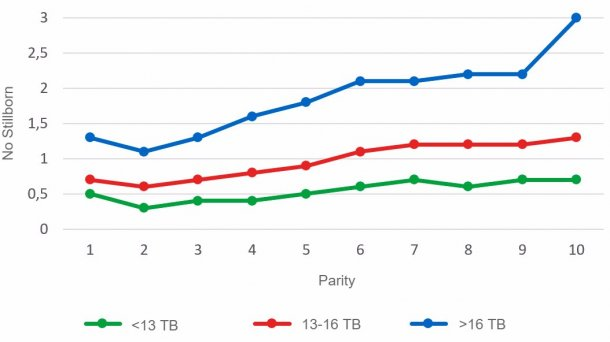 Graph3: Average number of stillborn piglets according to parityfor litters of less than 13, between 13 and 16or more than 16 Total Born piglets.Analysis of93.896 farrowingsfrom hyperprolific sows recorded fromOctober 14 to September 16
