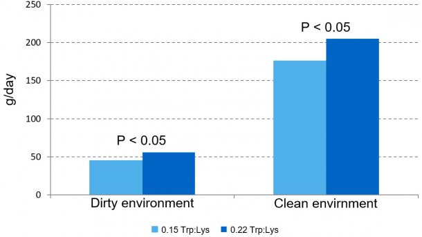 Figure 1 – Effect of dietary Trp:Lys ratio on growth rate in the prestarter phase in two different environments.