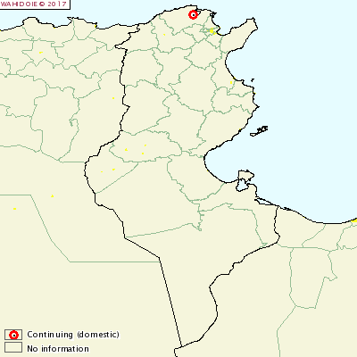 FMD_Tunisia
