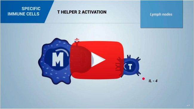 Immunology video