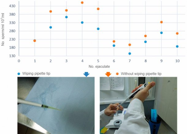 Figure 3. Comparison of sperm concentration between pipettes with wiped tips and non-wiped tips