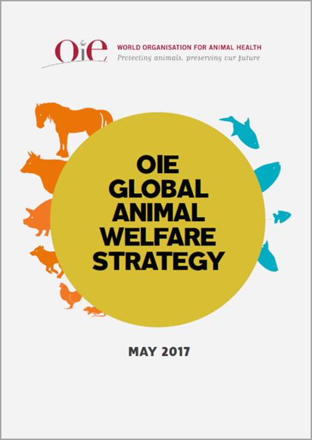 OIE global strategy on animal welfare  1