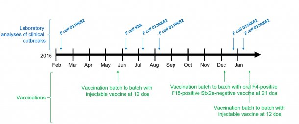 Picture 1: Laboratory analyses of clinical outbreaks and vaccinations calendar