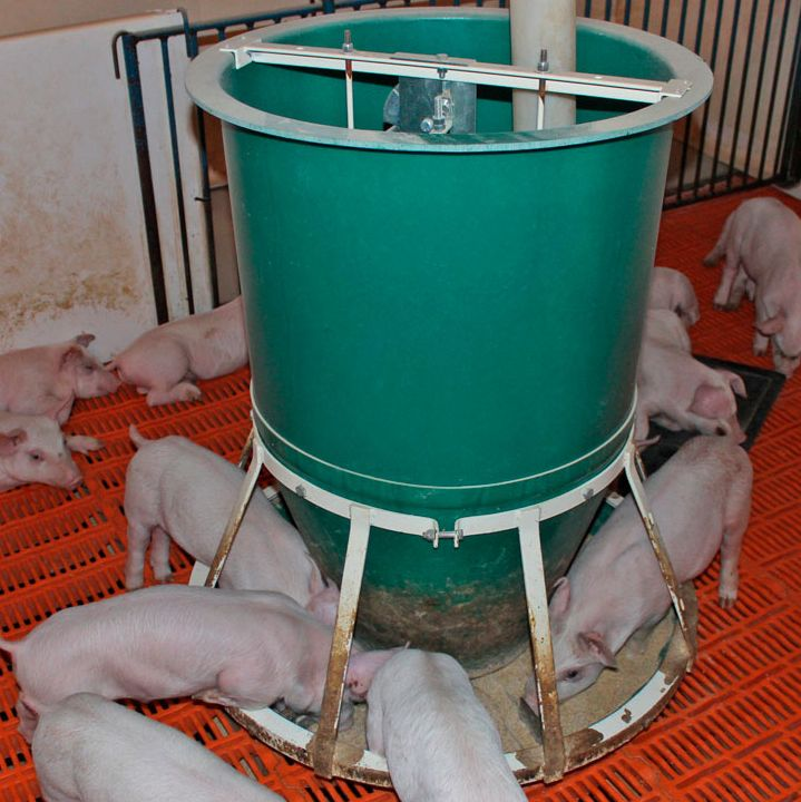 Osborne's FAST Start™ feeder allows pigs to grow from wean to finish on a single feeder with virtually no attention, adjustments, or wasted feed.
