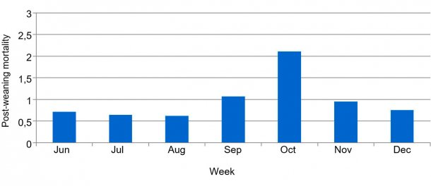 Graph 2. Percentage of post-weaning weekly mortality, before and during PED.