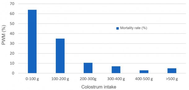 Figure 1. Relationship between colostrum intake and pre-weaning mortality (PWM)