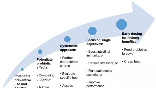 Figure 2. Strategies to improve the use of probiotics in early life stages