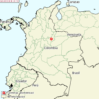 <p>Foot-and-mouth disease Colombia</p>