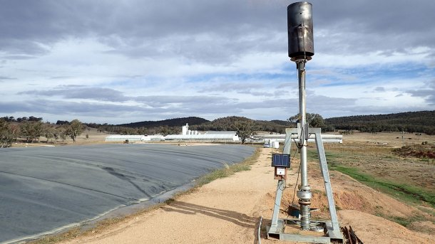 Covered anaerobic pond at a 20,000 standard pig unit grow-out piggery in New South Wales.
