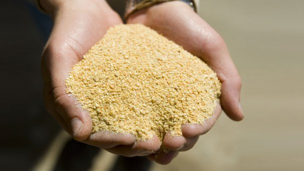 Soybean meal (44-48% CP) - Articles