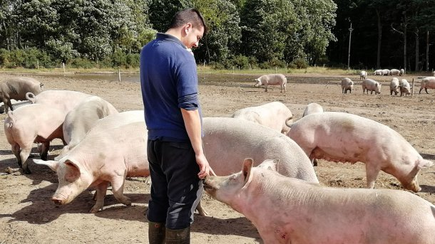 The relationship that develops between animal and operator is completely different.