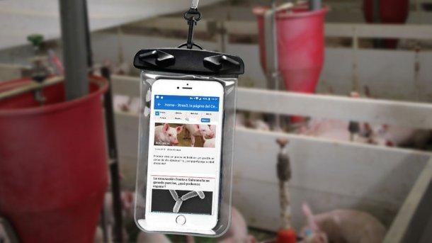 A cellphone inside a waterproof bag.