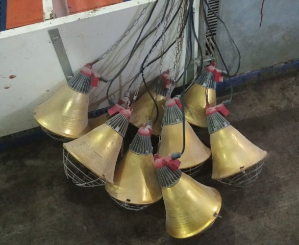 Picture 2: Farrowing lamps incorrectly stored between batches increasing the risk of infrared bulb and electric connections damage (photo courtesy of DanAg International, China)