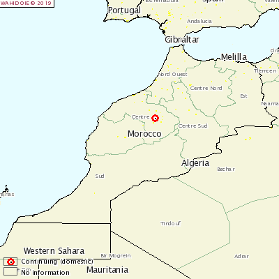 <p>Foot-and-mouth disease Morocco</p>