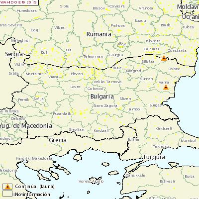 <p>ASF Bulgaria</p>