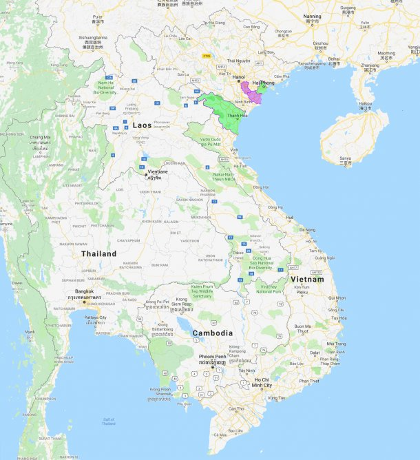 Hai Phong and Thanh Hoa, new provinces affected by ASF.