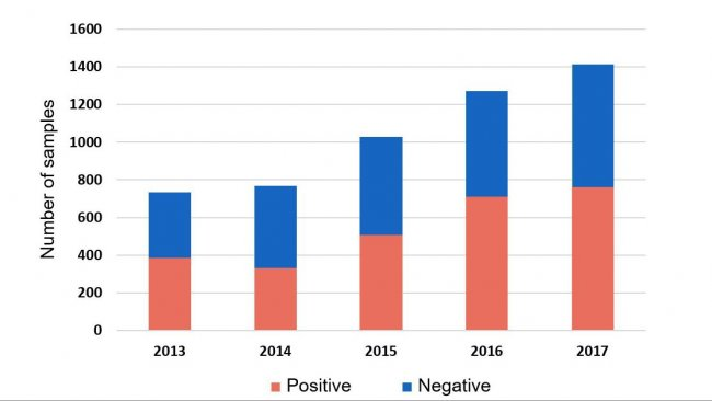 Figure 1: Detection of H. parasuis in systemic samples by PCR from cases submitted in 2013-2017. ISU database 2018.
