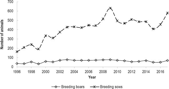 Census of Basque pig breed, presenting the evolution of the number of sows and boars per year, starting with the year of heard book establishment