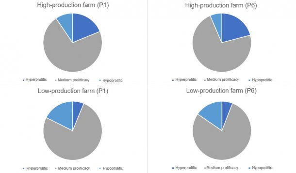 Figure 1. Distribution of the kind of sows, in parity 1 and 6 categorised by the kind of farms considered