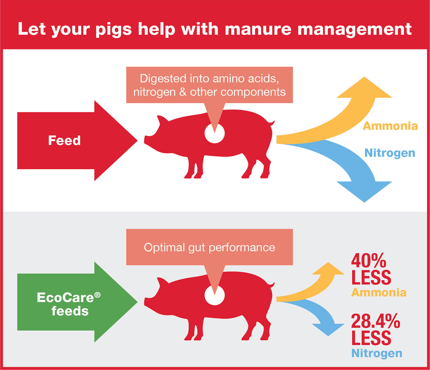 Put your pigs in charge of manure management - Company news