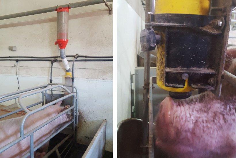 Hình & nbsp; 1. & nbsp;  Hệ thống cấp liệu này bao gồm một bộ phân phối, một ống nối khá dài, một thiết bị với phễu và một cơ cấu bi