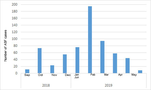 <p>Monthly number of positive wild boars discovered in Belgium after the first case in September 2018 (source: ADNS as of July 8th, 2019).</p>