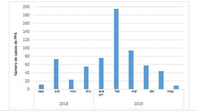 Monthly number of positive wild boars discovered in Belgium after the first case in September 2018 (source: ADNS as of July 8th, 2019).