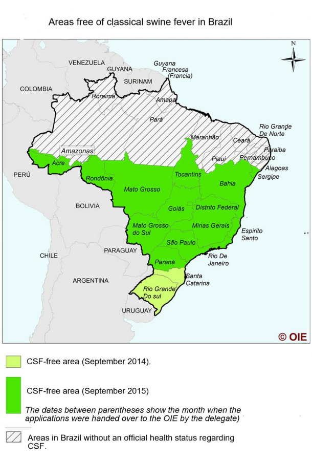 Situation of CSF in Brazil
