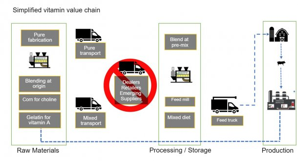 Figure1. General description of the vitamin value chain for animal feed.