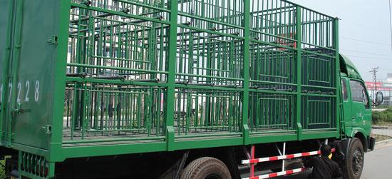 Camión transporte cerdos en China