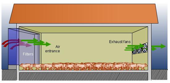 Negative pressure tunnel ventilation. Summer ventilation