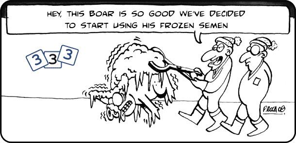 Frozen semen