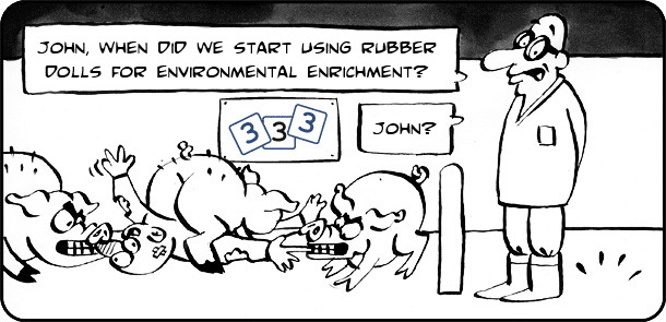 Environmental enrichment