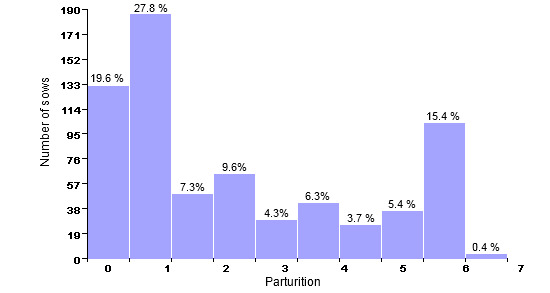 Census structure on December 31st 2006 (668 productive sows; average: 3.08 parturitions)