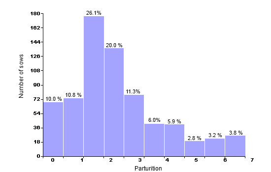 Census structure on December 31st 2007 (679 productive sows; average: 3.16 parturitions)