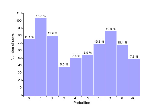 Census structure on December 31st 2009 (673 productive sows; average: 4.28 parturitions)