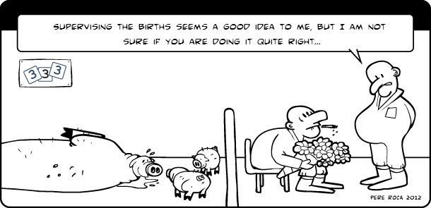Births supervision